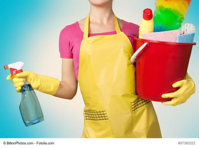 Frau mit Reinigungsmitteln