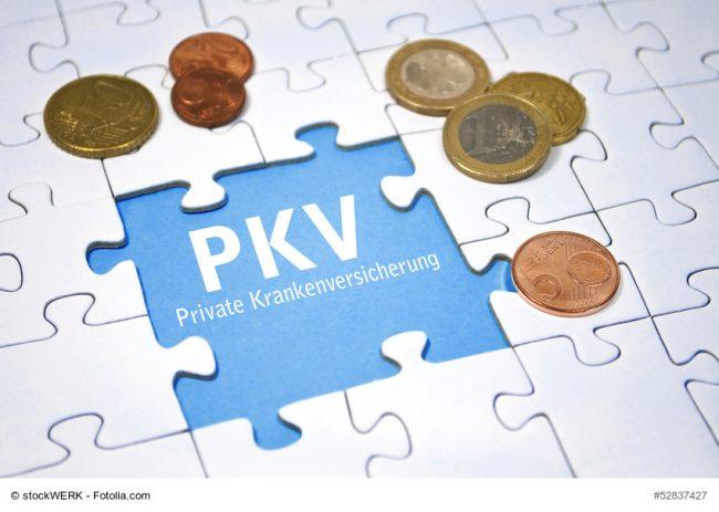 Puzzle mit Geld und PKV