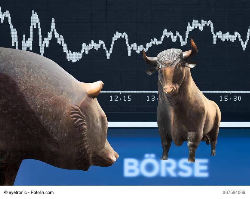 Bär und Bulle an der Börse