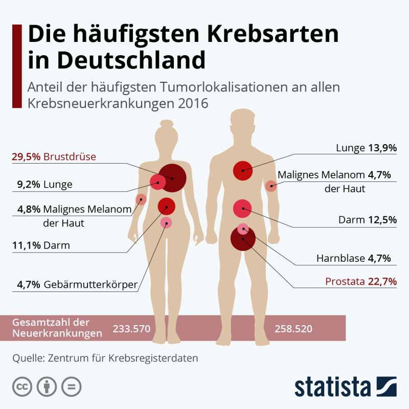 Grafik Krebsarten in Deutschland