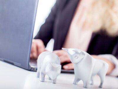 Bulle und Bär vor einer Frau mit Laptop