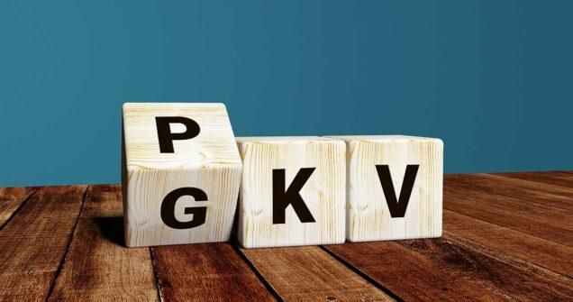 Würfel mit der Aufschrift PKV